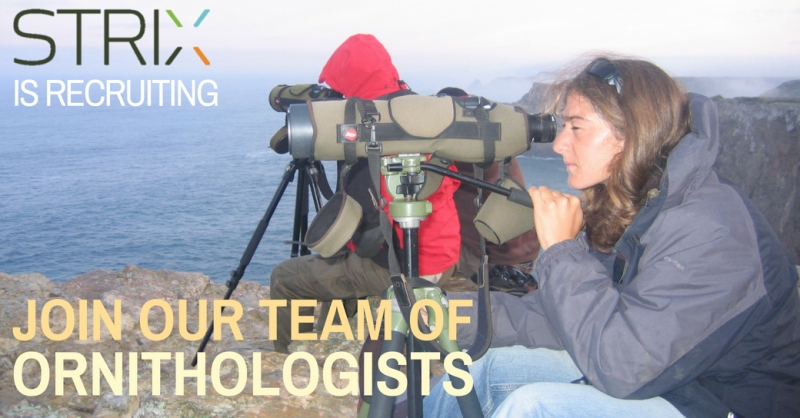 Join our Team of Ornithologists