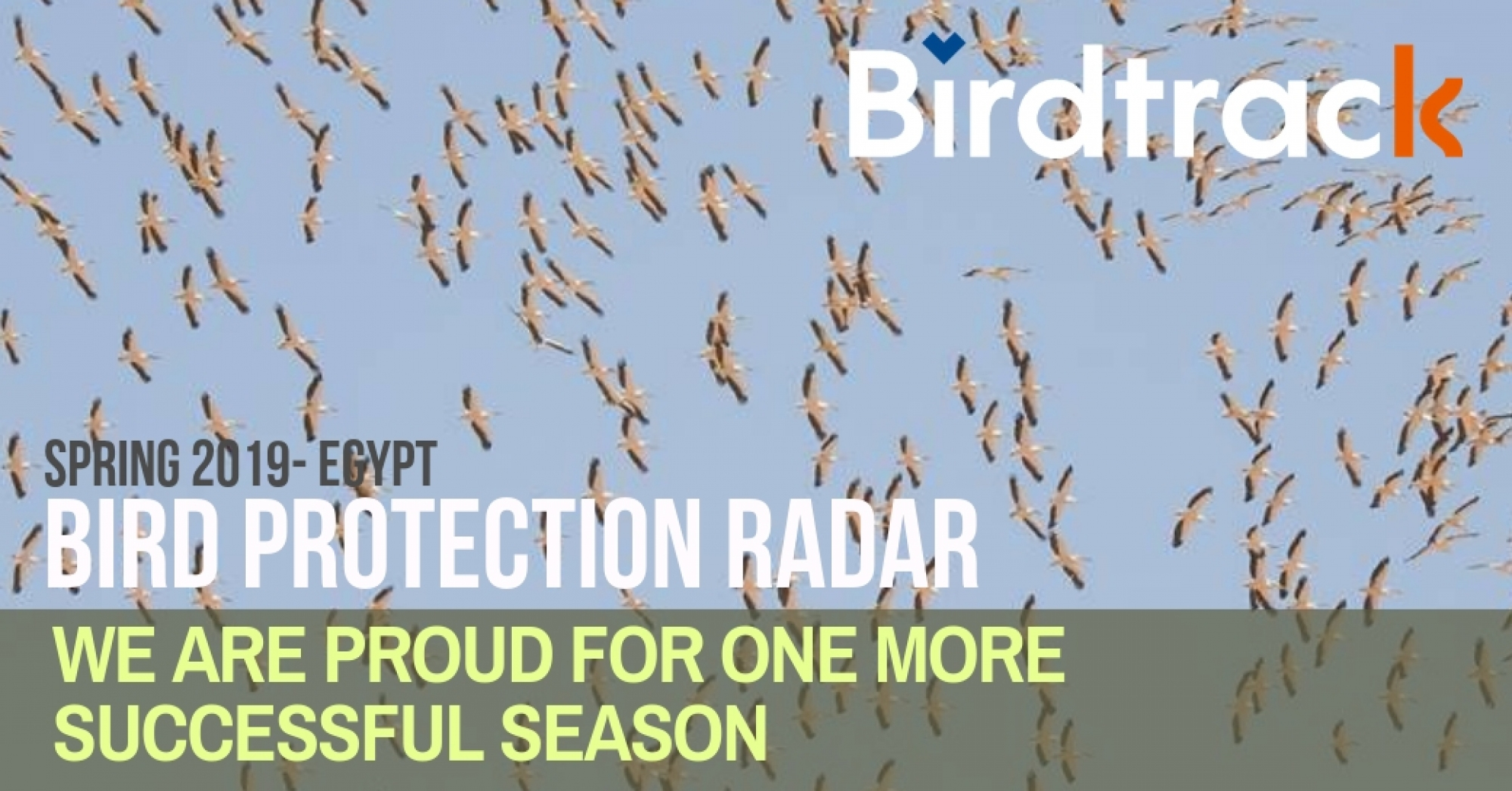 Birdtrack Campaign Successfully Completed